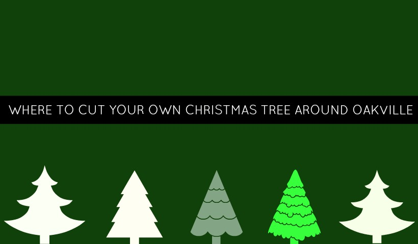 Where Can You Cut Your Own Christmas Tree Around Oakville?